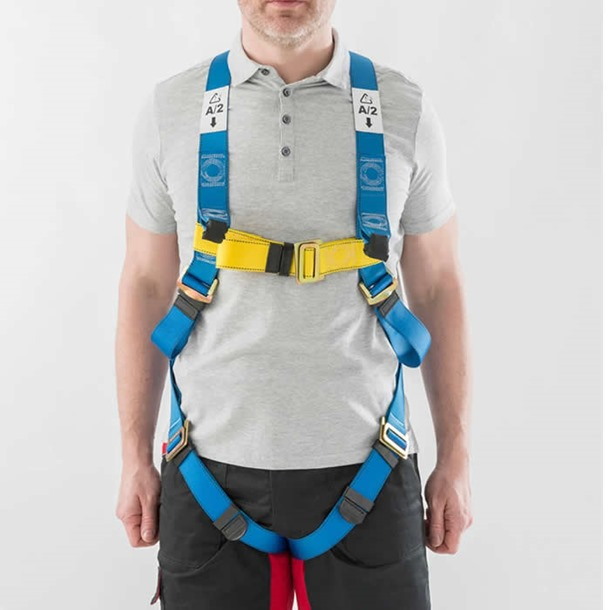 Two Point Universal Harness
