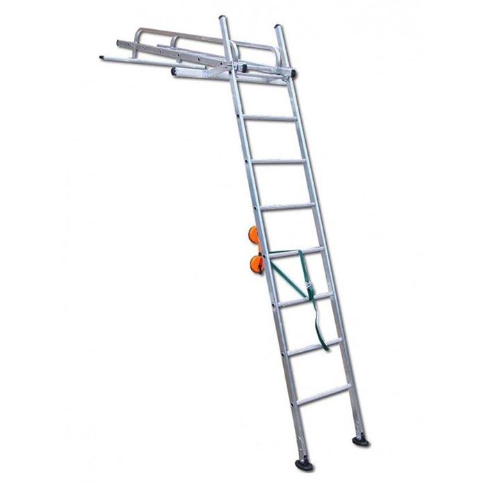 Conservatory Access Ladder